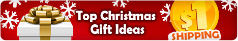 $1 for Top Christmas Gift Ideas