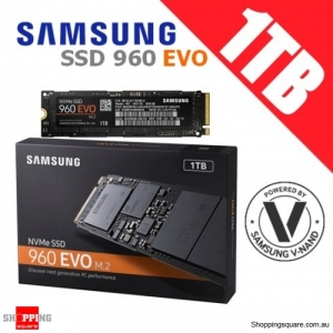 Samsung SSD 960 EVO NVMe M.2 1TB Internal Solid State Drive PC Gamer High Performance Designer