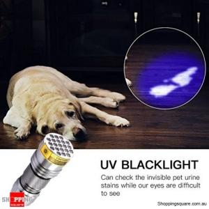 21-LED 400nm Violet UV LED Flashlight Fluorescence Sterilization Banknote Detection Torch - Silver