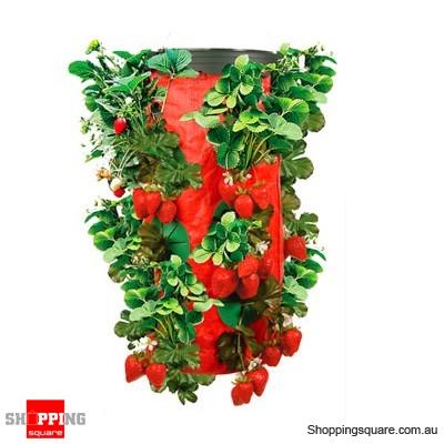 Upside Down Strawberry Planter - Upside Down Strawberry Planter - Online Shopping @ Shopping Square