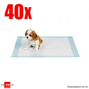 40pcs 60x60cm Puppy Dog Pet Toilet Training Pads