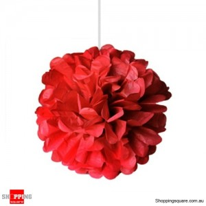 Red Tissue Paper Pom Poms for Party Decorations 25cm