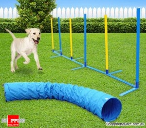 2 Piece Dog Agility Training Combo Set