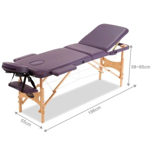 Genki Foldable 3-Section Massage Table with Carry Bag-Violet