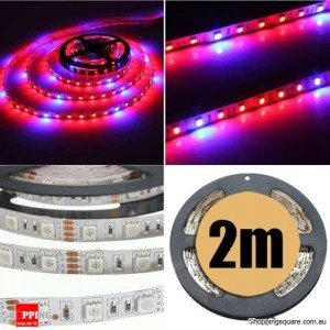 2M 5:1 Red/Blue 5050 SMD LED Light Glow Strip 12V for Hydroponic Plant & Ecological Life Support
