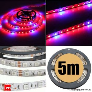 5M 5:1 Red/Blue 5050 SMD LED Light Glow Strip 12V for Hydroponic Plant & Ecological Life Support