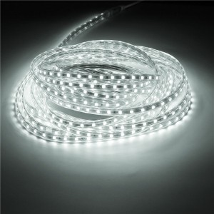 10M IP67 Waterproof 600SMD 5050 LED Light Strip 220V - Pure white