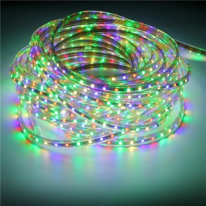 10M IP67 Waterproof 600SMD 5050 LED Light Strip 220V - RGB