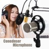 Professional Dynamic Condenser Recording Microphone + Shock Mount White Colour