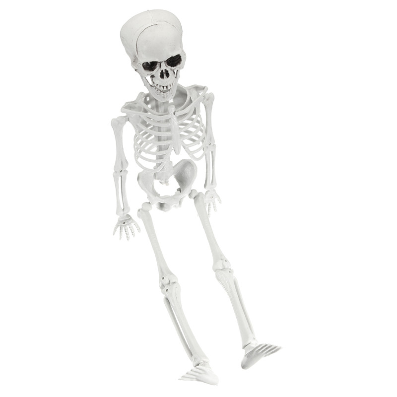 Dummy Adult Human Body Skull Skeleton Corpse Accessory for Haunted House Decoration Halloween