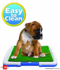 Potty Pad-The indoor restroom for pets
