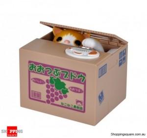 Lovely Stealing Money Cat Coin Bank Box
